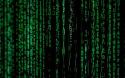 The Evolution of Information Management Training – Information Audit